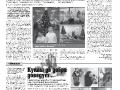 43_a3_tipograf-var3-indd-page-003