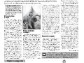 43_a3_tipograf-var3-page-006