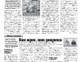 01_a3_tipograf-var3-page-004