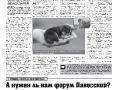 04_a3_tipograf-var3-page-003