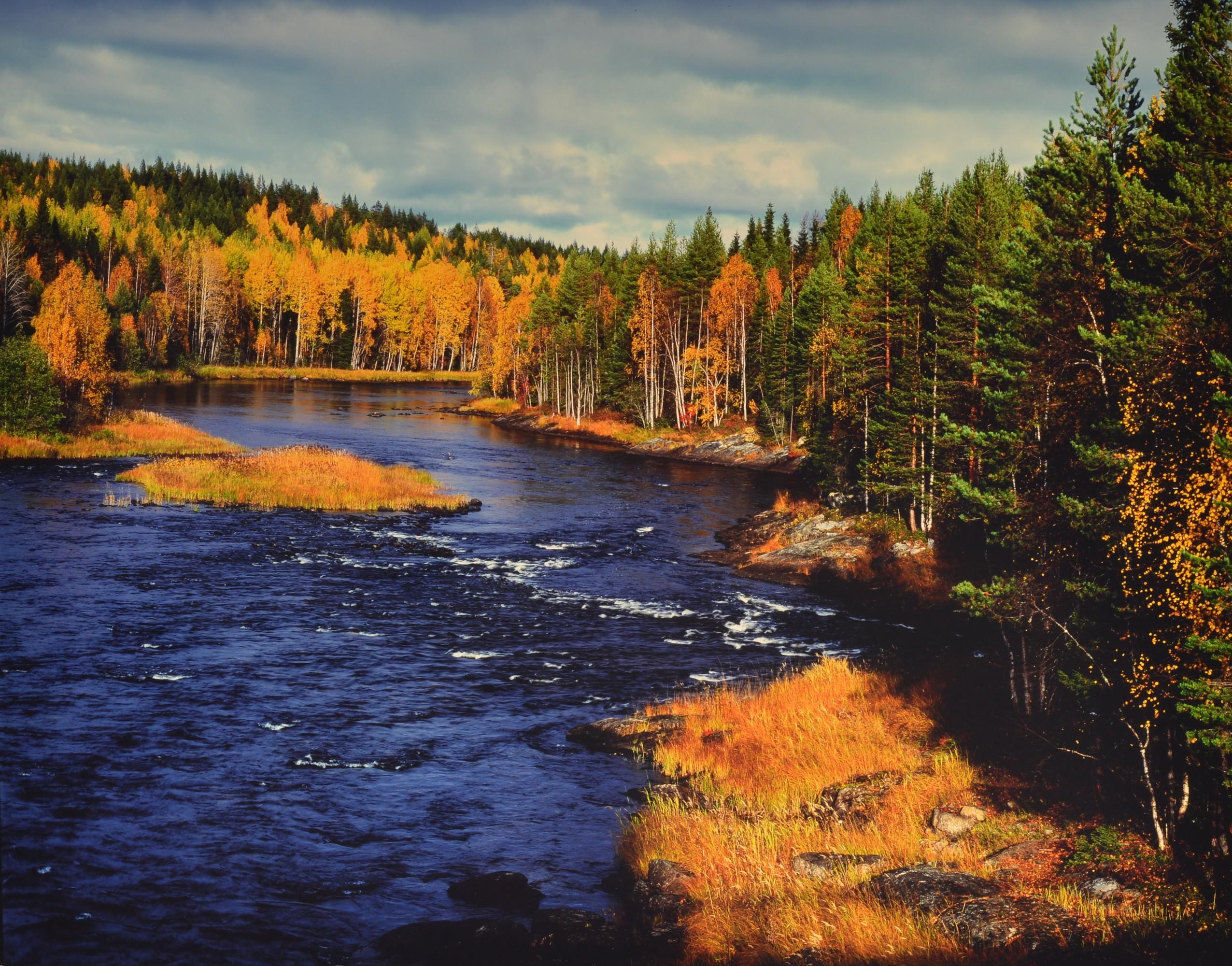 Путешествие на золотой Север
