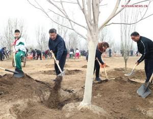 В объективе - Китай | Си Цзиньпин принял участие в посадке деревьев
