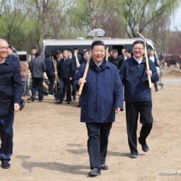 Си Цзиньпин призвал общественность к широкому участию в кампании по озеленению страны