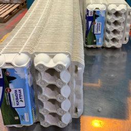 Поможет ли «мусорная реформа» подешеветь яйцам?