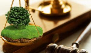 Принудительное изъятие земель: памятка от юристов